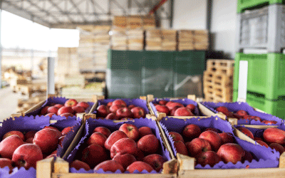 Overcoming Foodservice Supply Chain Challenges